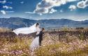森格4599元婚纱照