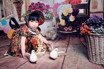 丽江三只小熊摄影