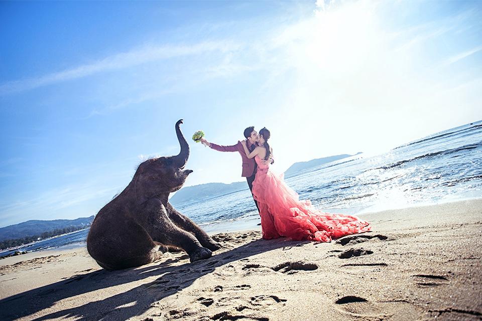 爱和映像6996元婚纱照