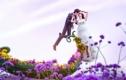 兰蔻6299元婚纱摄影