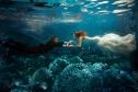 天地人5898元高端水下婚纱照拍摄