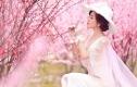 新好莱坞2017元花海婚纱摄影