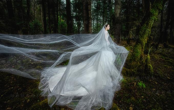 麦田映画7680元定制森林系列婚纱套系