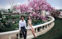 薇薇新娘3299元韩风尚婚纱照