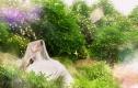 水晶之恋5988元婚纱照